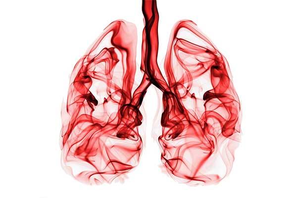 akciğerin önemi
