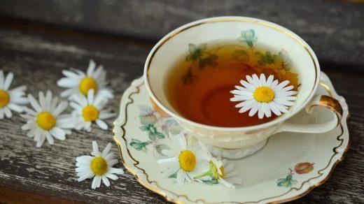 Dünyada Çay Üretimi